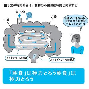 健康法BP2.jpg