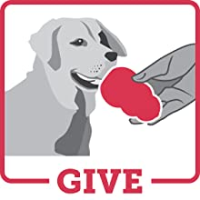 give gentle treat filled toy to dog