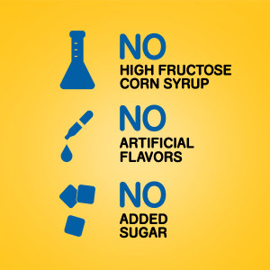 No High Fructose Corn Syrup, No Artificial Flavors, No Added Sugar, High Quality Dog Food