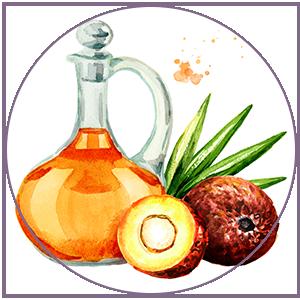 Buriti oil helps restore skin's lipid barrier