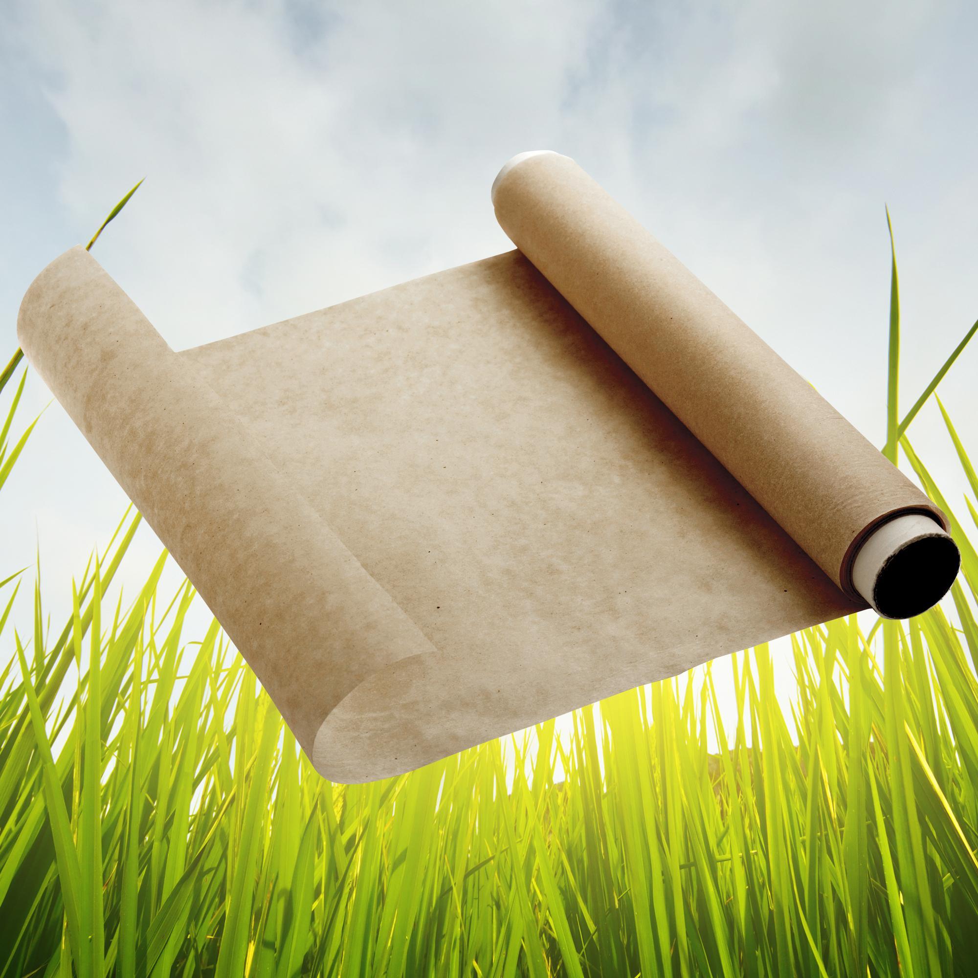 Beyond Gourmet Unbleached Parchment Paper 71 Square Foot