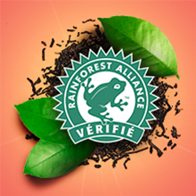Rainforest Alliance, Lipton 100% responsable, agriculture durable, commerce équitable, recyclage