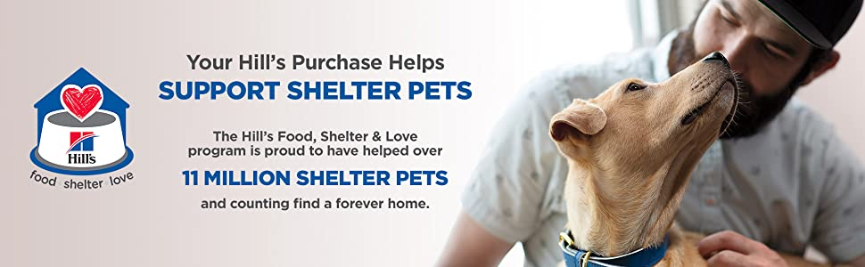 11 Million Shelter Pets And Counting