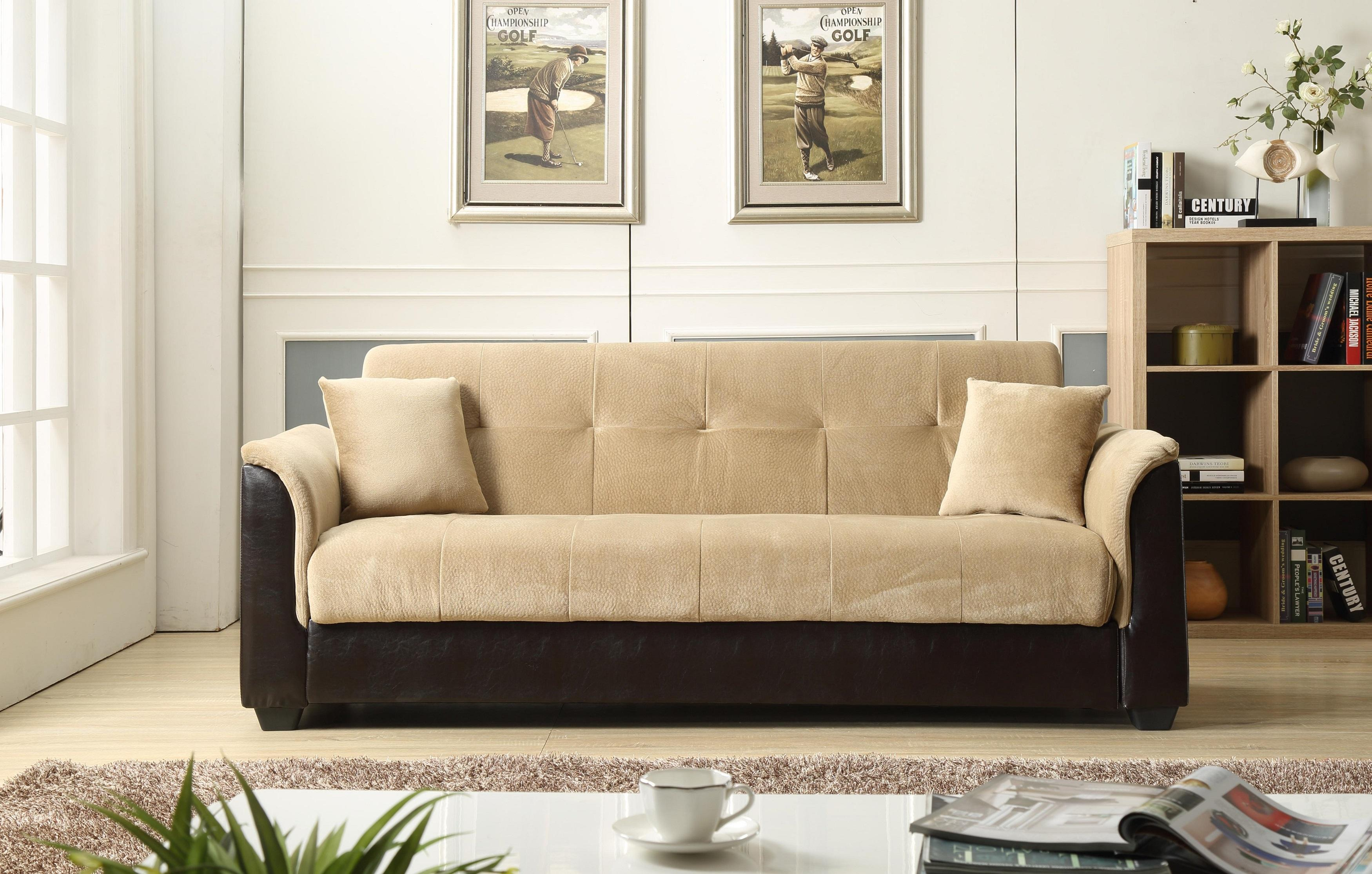 Amazon NHI Express Melanie Futon Sofa Bed with Storage