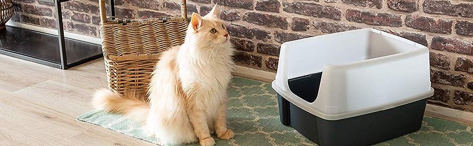 Bac à litière en plastique noir Cat Litter Box