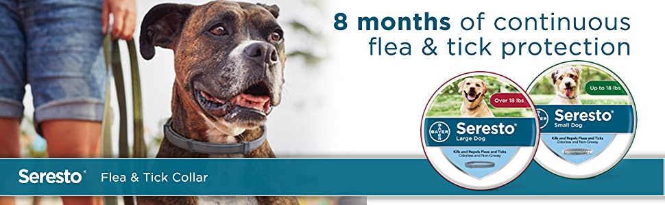 Seresto flea collar for dogs, 8-month flea and tick prevention for dogs  over 18 lbs