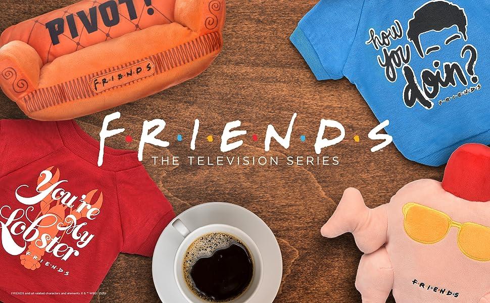 friends, merchandise, toys, pets, tshirts, pivot, joey, phoebe, chandler, monica, rachel, ross