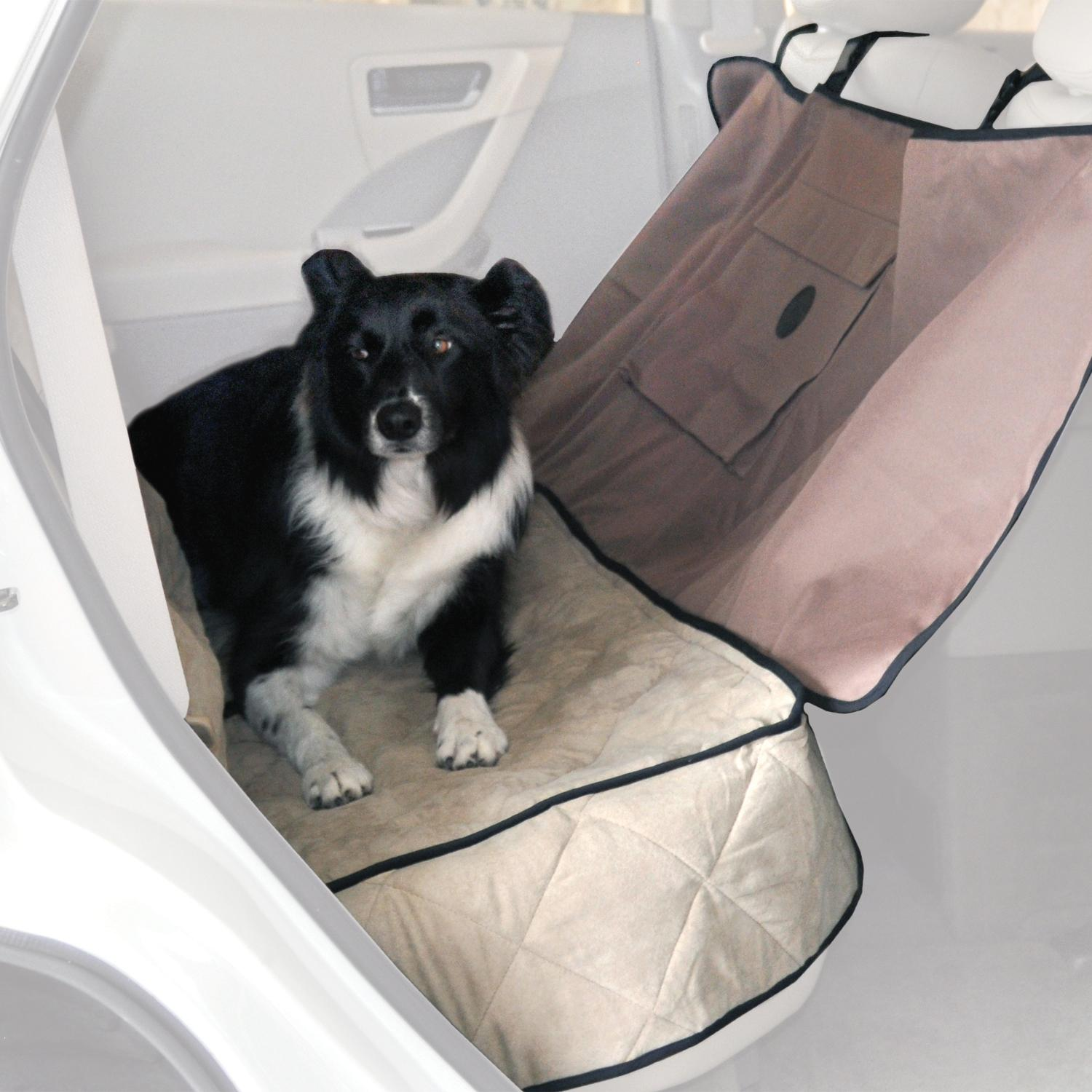 Where Can I Find An Affordable Dog Bed
