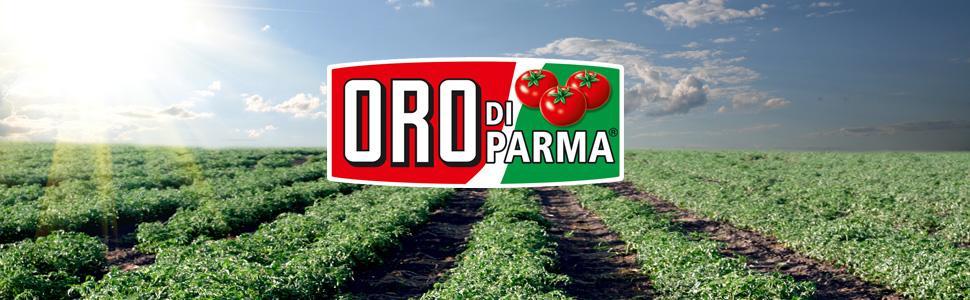 Oro Di Parma Pizza Sauce Oregano 6er Pack 6 X 400 G Dose Amazon De Lebensmittel Getranke