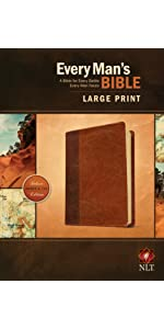 men's Bible, temptation, help, purity, struggle, hope, advice, work issues, competition, study notes