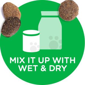 Mixed Feeding, Wet Dog Food, Soft Dog Food, Moist Dog Food, Dry Food, Kibble, Variety