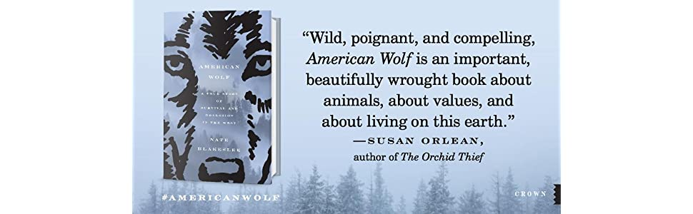 american wolf;susan orlean;yellowstone;wolf books;wolf project;o-six;06;wolf pack;orchard thief