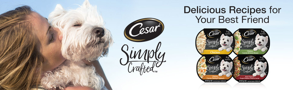 Cesar Simply Crafted, Delicious Recipes, Best Friend, Cesar Wet Dog Food, Food for Adult Dogs