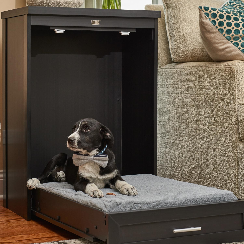 Amazon.com : ecoFLEX Murphy Style Dog Bed with Memory Foam