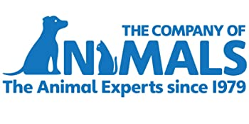 the company of animals halti dog training