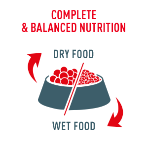 Royal Canin offers a combination of wet & dry cat food that provides complete and balanced nutrition