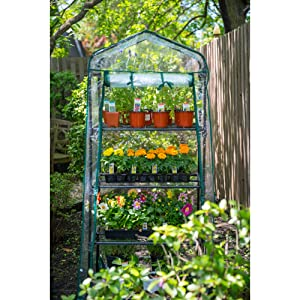 greenhouse, portable greenhouse, gardman