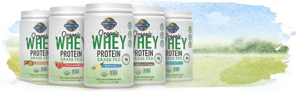 organic whey protein grass fed non gmo usda organic