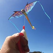 Wind N Sun - Guy Flying FantasyFliers Dragon Kite