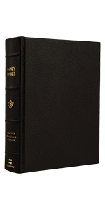 ESV Single Column Journaling Bible, Large Print, Buffalo Leather, Deep Brown