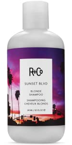 blonde shampoo; purple shampoo