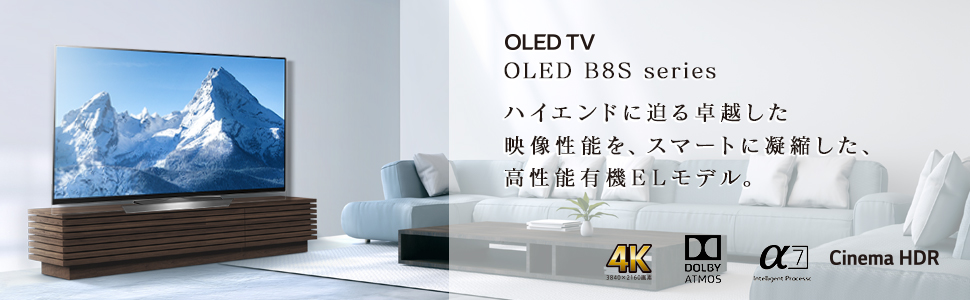 OLED B8S series