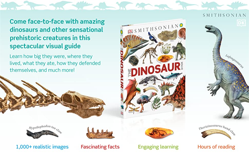 kids dinosaur book encyclopedia about dinosaurs learning books  for kids