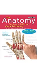 Barron S Anatomy Flash Cards 9781438077178 Medicine Health