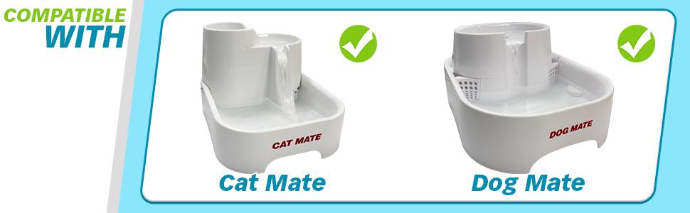 cat mate, dog mate