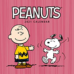 Peanuts Snoopy 2021 Schedule Book Agenda Planner 6-rings refill new weekly