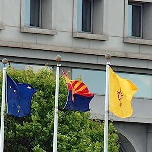 State flags Annin Annin Flagmakers nylon