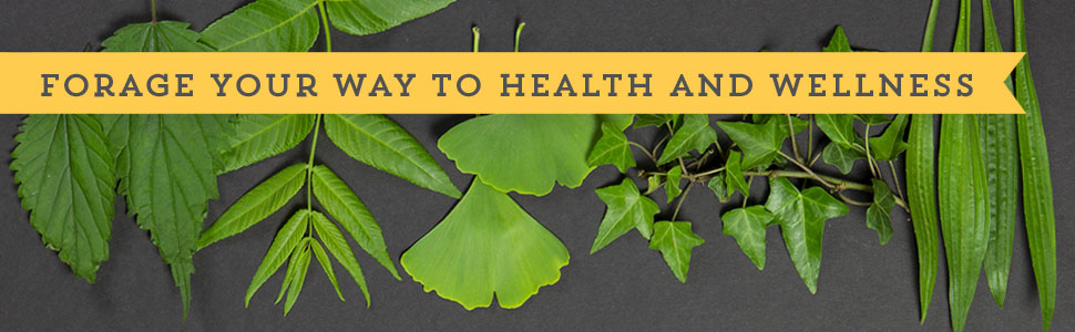 Medicinal Foraging Guides forage health wellness