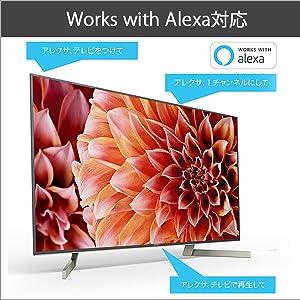 Works with Alexa対応