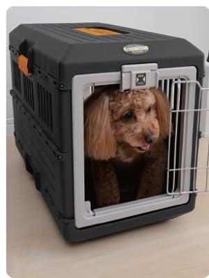 Pet Carry