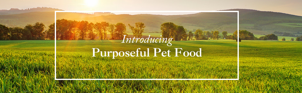 Introducing Purposeful Pet Food