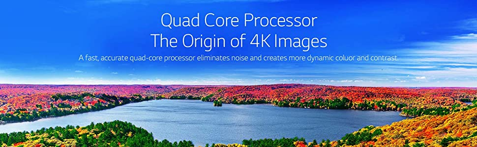 Quad processor