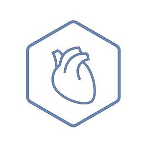 Heart & Oxidative Stress