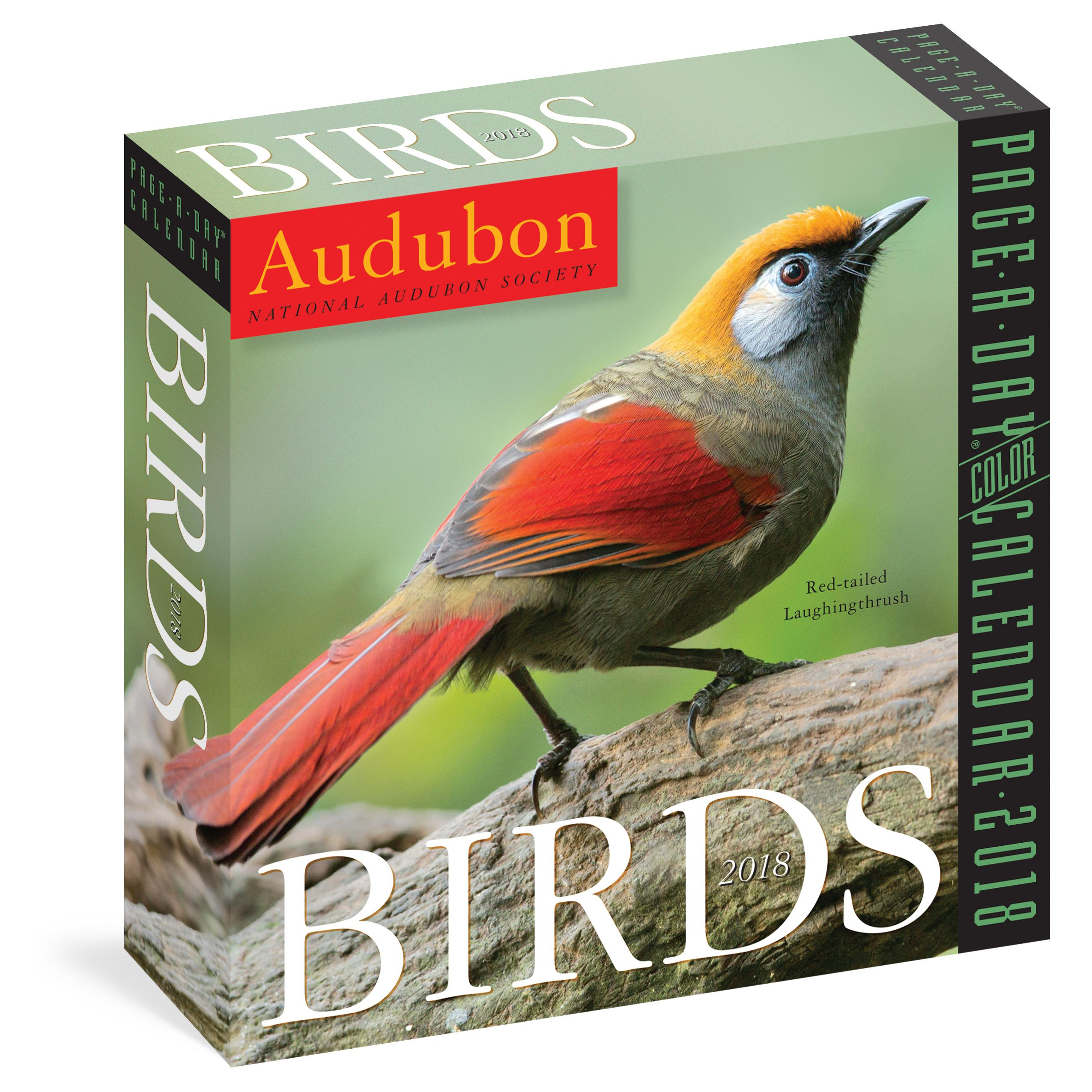 amazon com audubon birds page a day calendar 2018 9781523500741