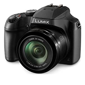Panasonic LUMIX Digital Camera DC-FZ80K