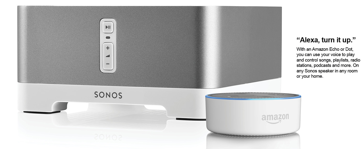 Amazon.com: Sonos CONNECT:AMP Wireless Amplifier for Streaming Music ...