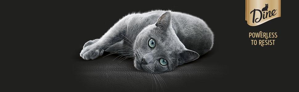 DINE Wet Cat Food Premium