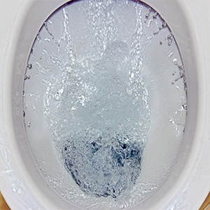 Dual Flushing systems can save water and money