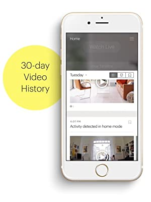canary membership video history cloud record store
