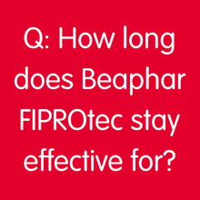 How long does FIPROtec stay effective for?