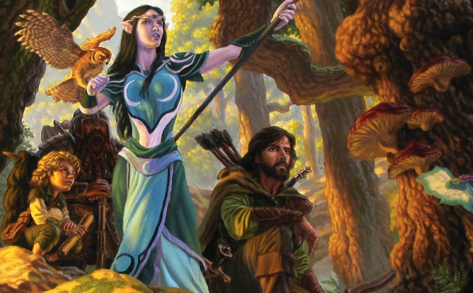 Adventuring Party Dungeons & Dragons
