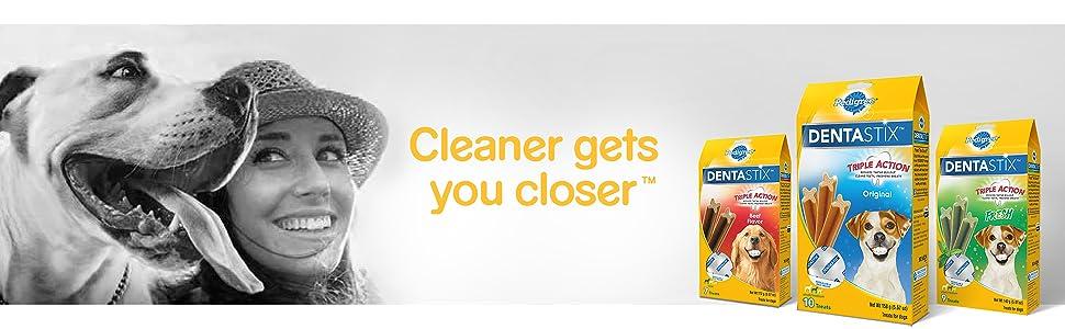 Cleaner Gets You Closer, Bulldog, Boxer, Golden Retriever, Dental Sticks, Tasty Dog Treats