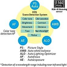 Canon EOS 80D 24.2MP Digital SLR Camera Cameras camera Canon