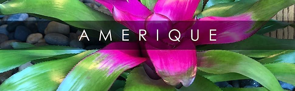 AMERIQUE PREMIUM ARTIFICIAL PLANT