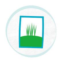 Back to the Roots, indoor garden,organic mushrooms,organic gardening,gardening tools,gardening ideas