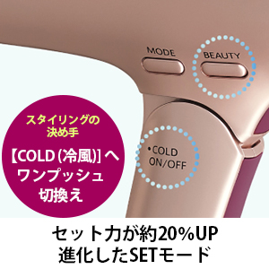 スタイリング 美髪 プラズマクラスター セット力 IB-JP9